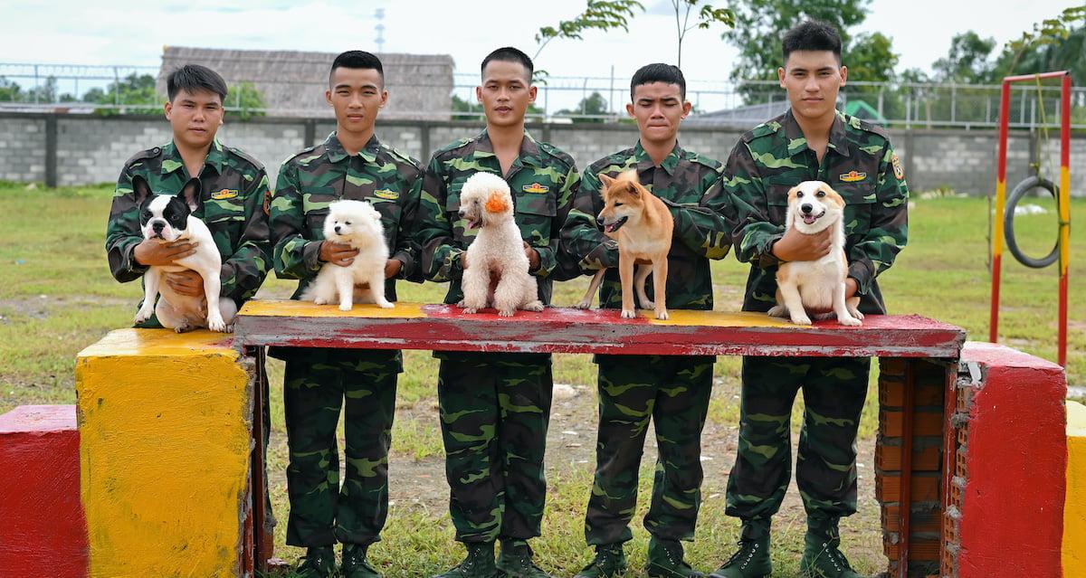 trường dạy chó TPHCM